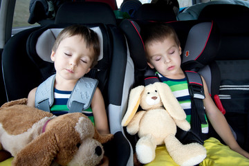 Two sweet boys, sleeping in the car with teddy bears