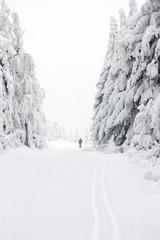 winter landscape, Orlicke Moutnains, Czech Republic