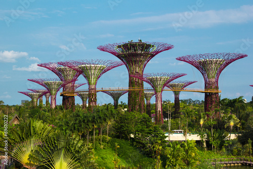 Fotobehang Singapore Iron Supertrees in Gardens by the Bay in Singapore