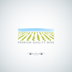 wine field background
