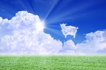 羊雲と草原