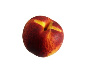 Mouth-watering nectarine