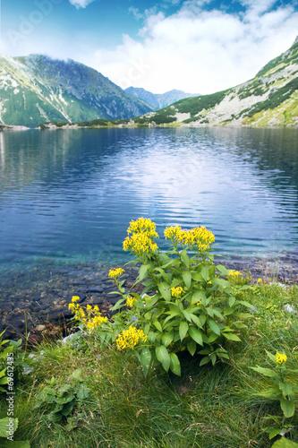 View of mountain lake in Tatra mountains