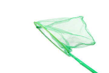 Green insect net on a white background.