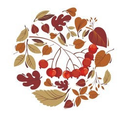 Autumn leaves with rowanberry