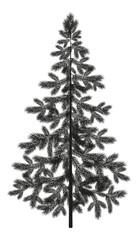 Christmas spruce fir tree silhouette