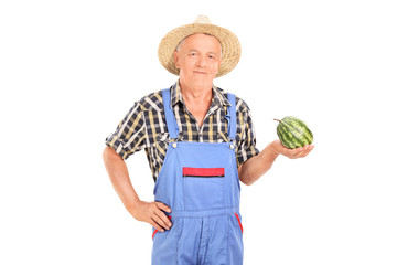 Agricultural worker holding a tiny watermelon