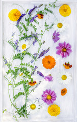 vetch  with summer garden flowers on withe wooden tray