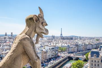 Gargoyle at Notre Dame Paris