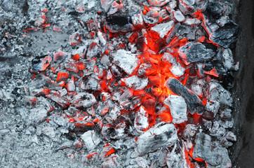 hot coals of wood