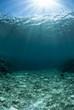 白い海底に降り注ぐ光
