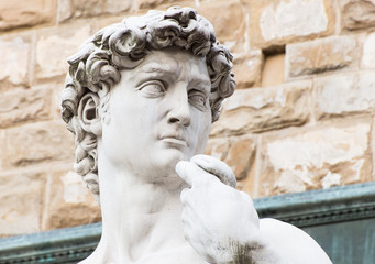Michelangelo's replica David statue, Florence. Italy