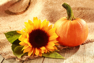 Rustic Thanksgiving background with copyspace