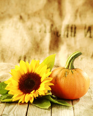 Thanksgiving background with large copyspace