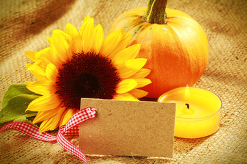 Colorful Thanksgiving or autumn card design