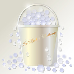 Ice Bucket Challenge Eimer Pearl Gold
