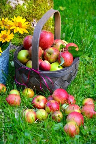canvas print picture Äpfel im Korb
