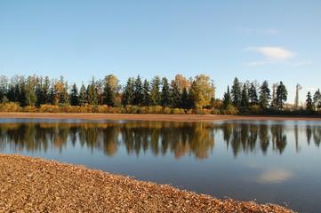 Spiegelung der Herbstbäume am See