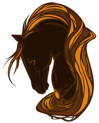 horse head with long mane