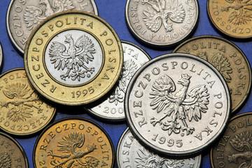 Coins of Poland