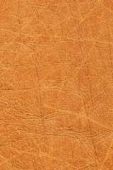 Old Vivid Ocher Leather Creased Mottled Grunge Texture