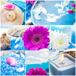 Wellness collage floral water bath salt spa series