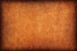 Old Vivid Ocher Leather Creased Mottled Vignette Grunge Texture