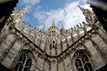 Milan Duomo roof. Angle view