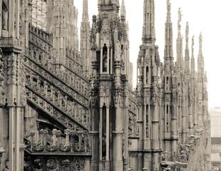 Milan Duomo. Roof.