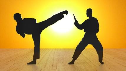 Karate sunshine II