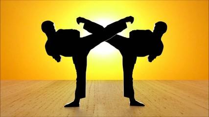 Black Karate Motionblur