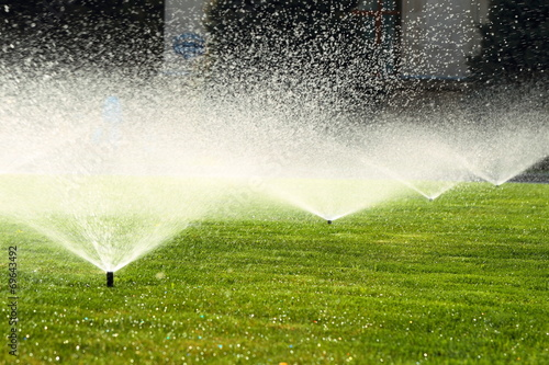 Papiers peints Jardin garden sprinkler on the green lawn