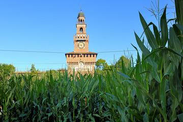 Milano Expo 2015 - Castello Sforzesco e mais all' Expo Gate