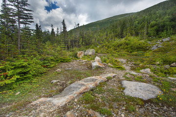 Rugged alpine terrain at top of Mount Washington NH