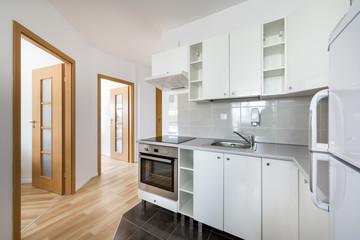 Small, white modern kitchen interior design