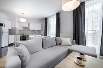 Modern interior design living room in scandinavian style