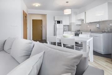 Open space, modern interior design kitchen