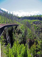 Tressels at Okanagan Valley Canada