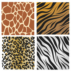 WIld african animals pattern set vector