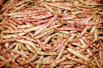 composition of white beans on farmers market
