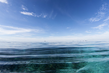 Blue Sky and Tropical Pacific Ocean