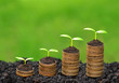 trees growing on coins / csr