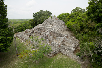 Mayan pyramid ruin surrounded by jungle