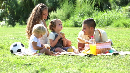 Happy family of four on picnic