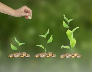 Progress of green business