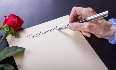 Mein Testament mit Füller schreiben