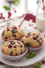 Chocolate and cranberries muffins