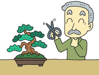 盆栽おじいちゃん