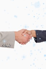 Composite image of side view of shaking hands of business people