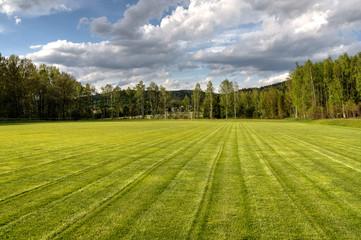 frisch gemähter Fußballplatz HDR